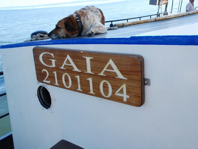 MGV Abendstern - Unser Schiff mit seinem Wachhund